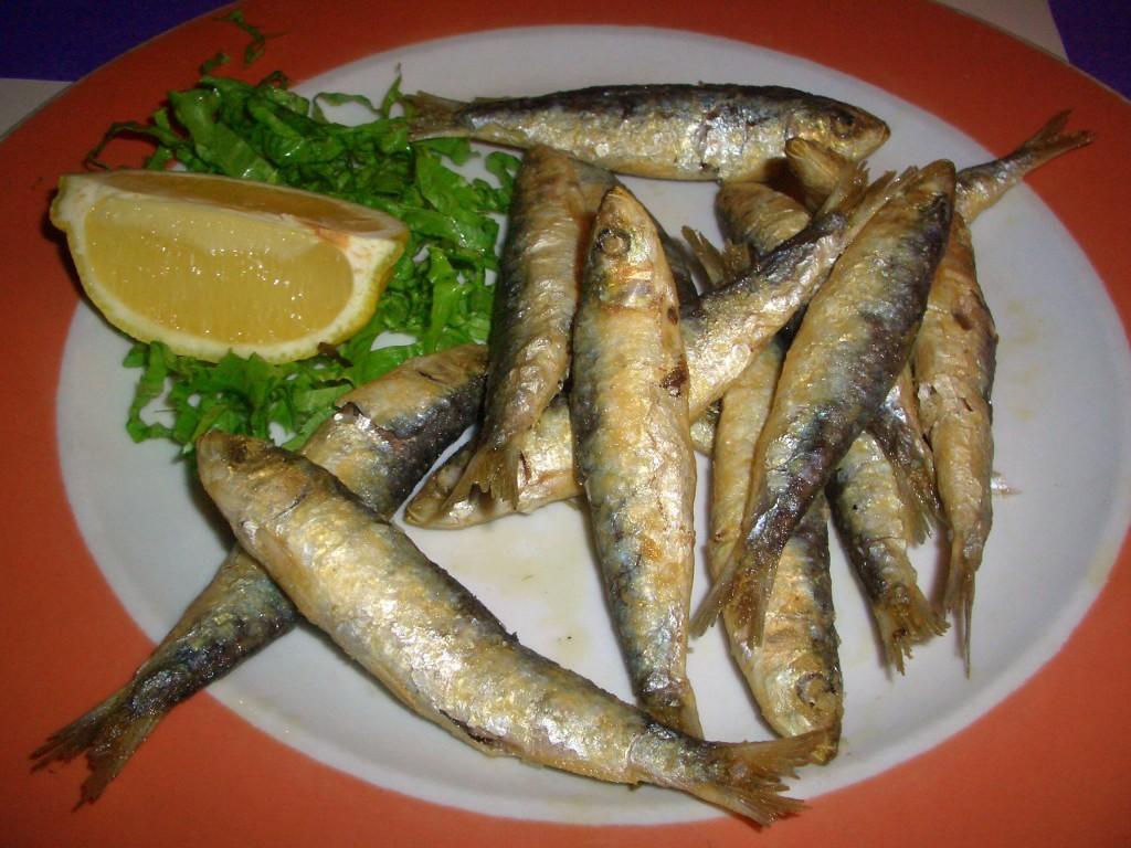 Xouvas (sardina pequeña)