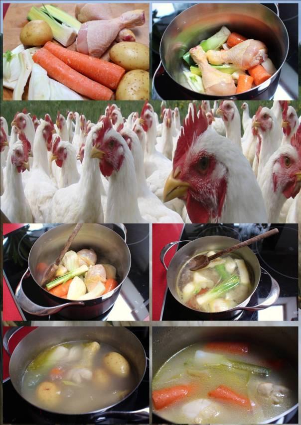 Caldo de Pollo