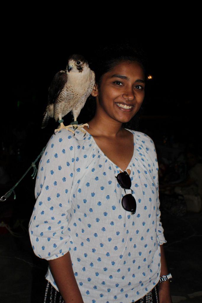 falcon_dubai