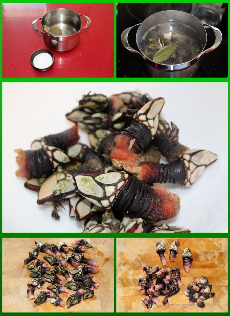 percebes_coccion