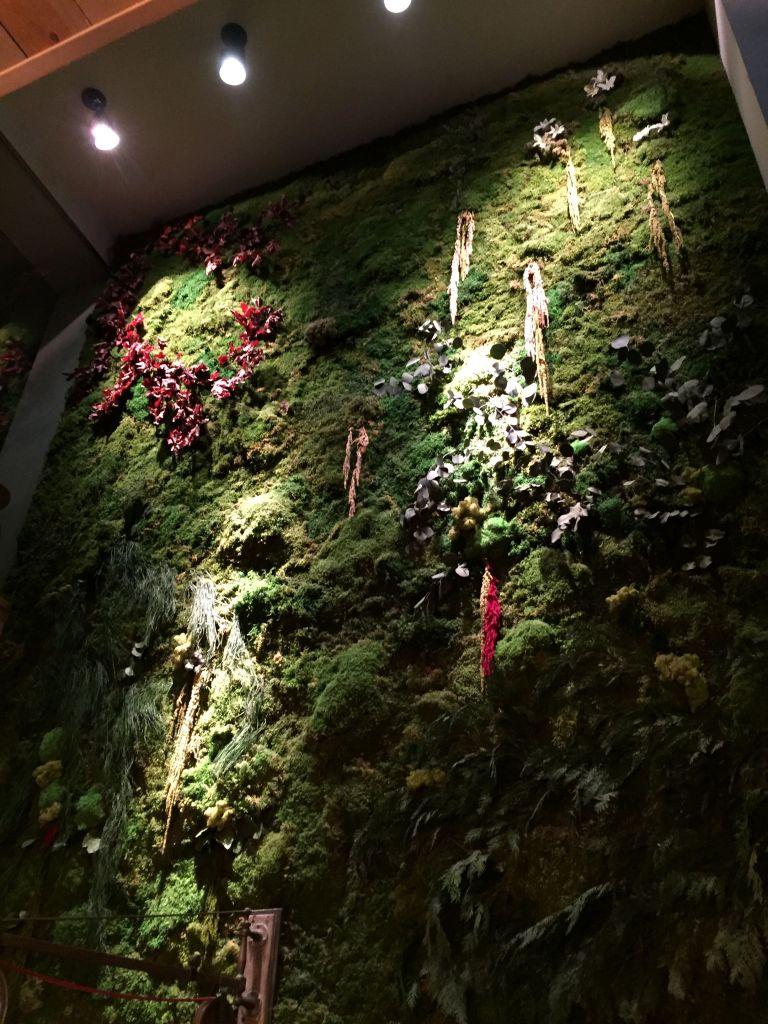 jardín_vertical