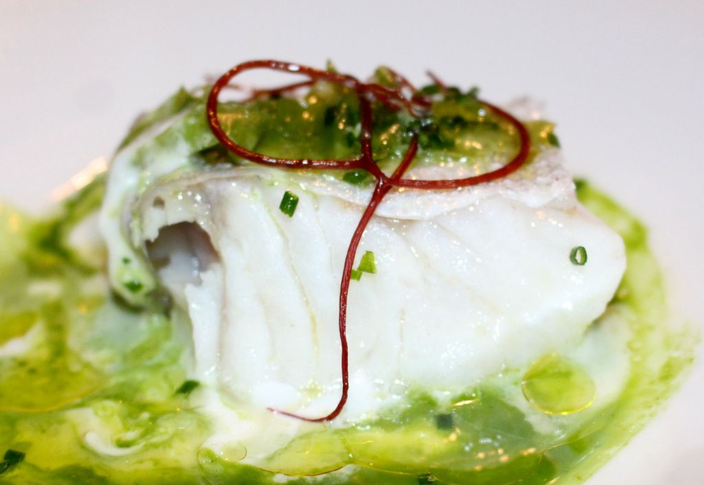 merluza del pincho con emulsión de su cogote, algas, cítricos y perejil