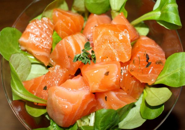 salmon curado